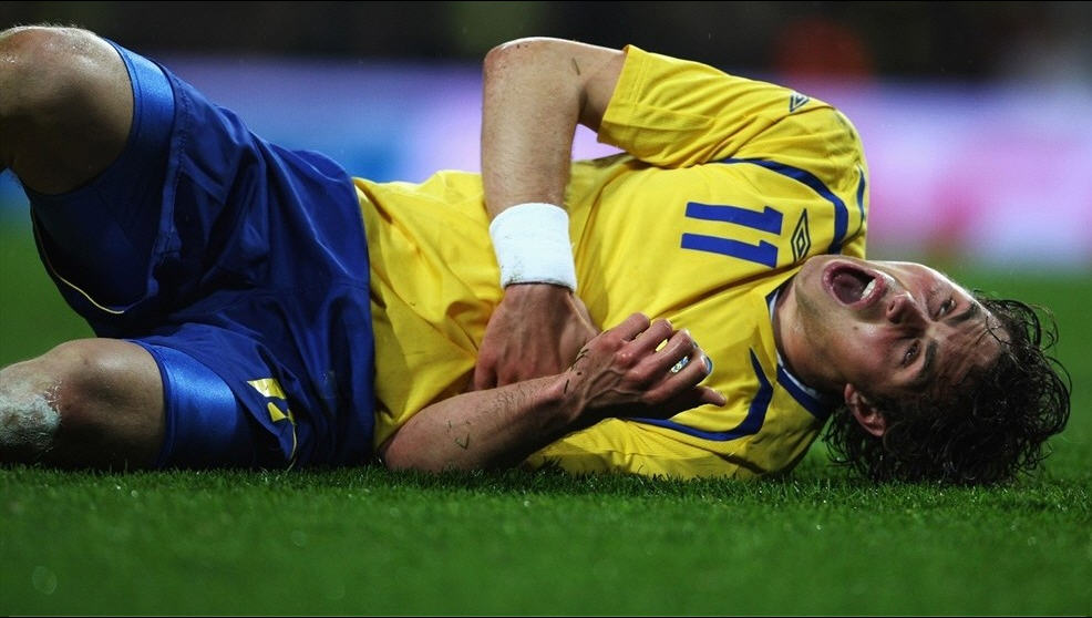 Euro 2008 National Team Sweden