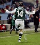 Salpingidis green